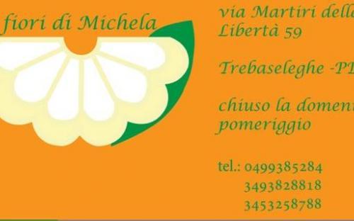 I fiori di Michela